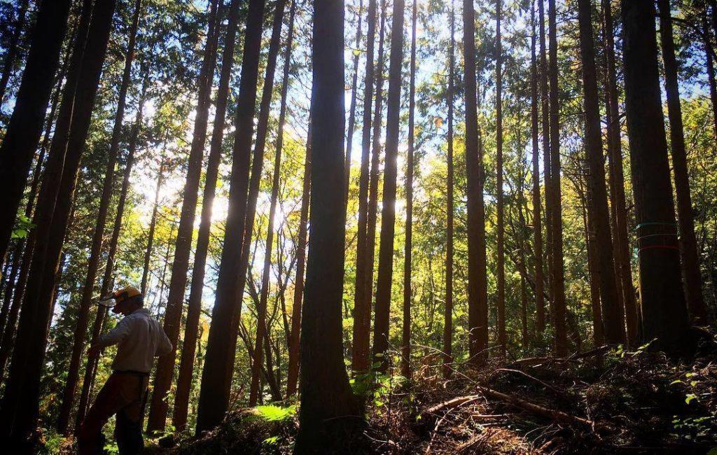 「副業型林業のススメ」講座を開催